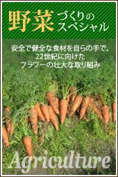 野菜づくりのスペシャル